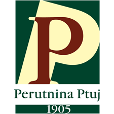 logo_pp_1.png (1)